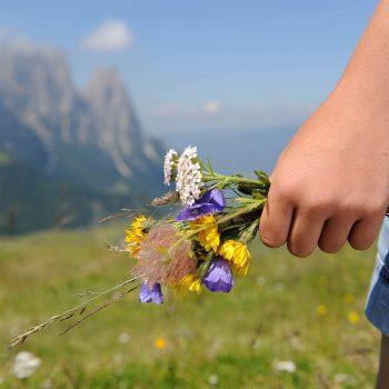 Escursioni sull'Alpe di Siusi