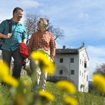 Hikes in spring and summer at the foot of the Seiser Alm