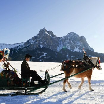 With the sleigh to the farm wedding