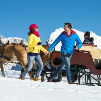 Driving with the carriage on the Seiser Alm